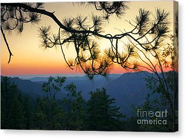 Yosemite Dusk Canvas Print by Ellen Cotton