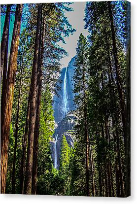 Yosemite Falls Canvas Print by Dany Lison
