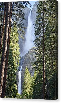 Yosemite Falls In Morning Splendor Canvas Print