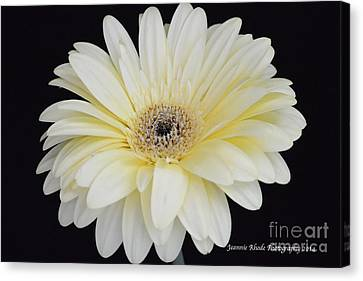 Canvas Print featuring the photograph You Are Loved by Jeannie Rhode