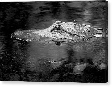 Canvas Print featuring the photograph You Better Not Go At Night by Wade Brooks