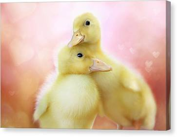 Ducklings Canvas Print - You Make Me Smile II by Amy Tyler
