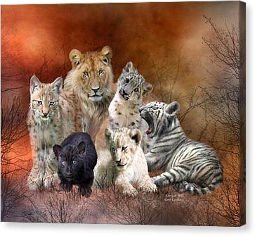 Lions Canvas Print - Young And Wild by Carol Cavalaris