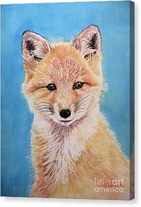 Young Fox Canvas Print by Diane Marcotte