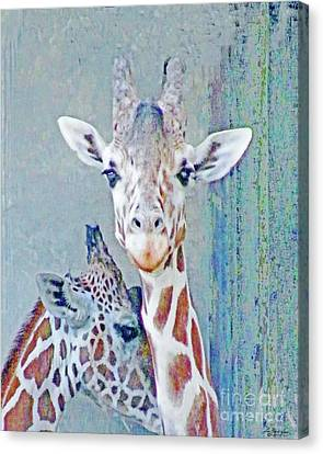 Young Giraffes Canvas Print