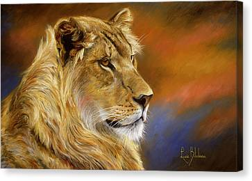Young Lion Canvas Print by Lucie Bilodeau