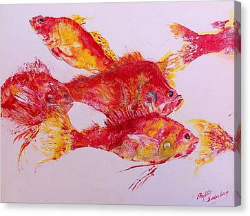 Young Snapper Family Canvas Print by Phyllis Soderberg