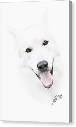 Canvas Print featuring the digital art Young Wolf by Erika Weber