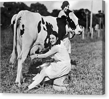 Young Woman Milking A Cow Canvas Print by Underwood Archives