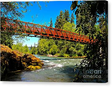Your Crossing  Canvas Print by Tim Rice
