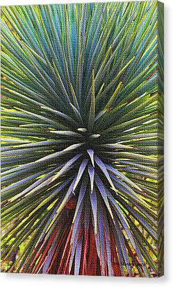 Canvas Print featuring the photograph Yucca At The Arboretum by Tom Janca