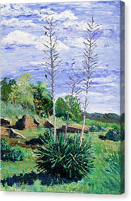 Pallet Canvas Print - Yucca At The Ruins by Timithy L Gordon