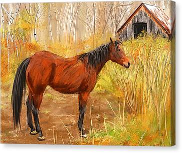 Yuma- Stunning Horse In Autumn Canvas Print by Lourry Legarde