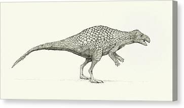 Zalmoxes Dinosaur Canvas Print by Nemo Ramjet