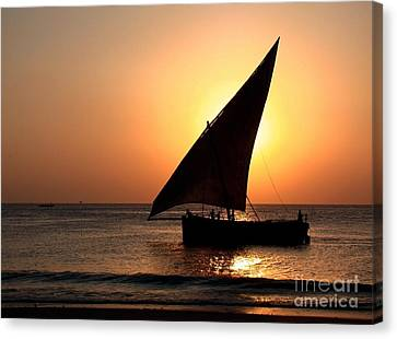 Zanzibar Sunset 22 Canvas Print by Giorgio Darrigo