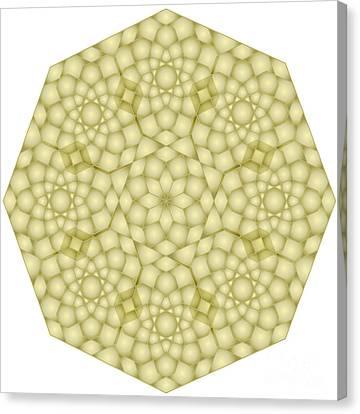 The Nature Center Canvas Print - Zawiyah Muqarna Cream by Cam Macfarlane