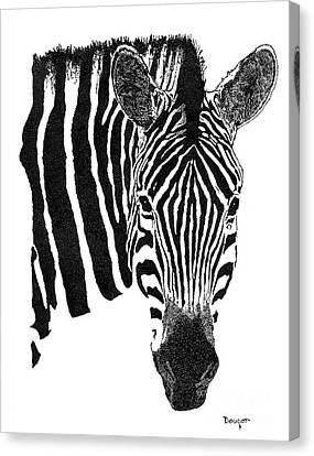 Zebra 1 Canvas Print