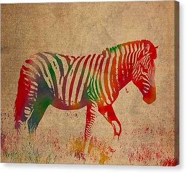 Zebra Animal Watercolor Portrait On Worn Canvas Canvas Print