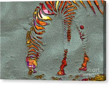 Zebra Art - 64spc Canvas Print