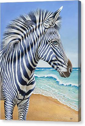 Zebra By The Sea Canvas Print