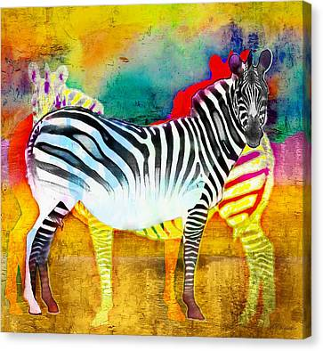 Zebra Colors Of Africa Canvas Print