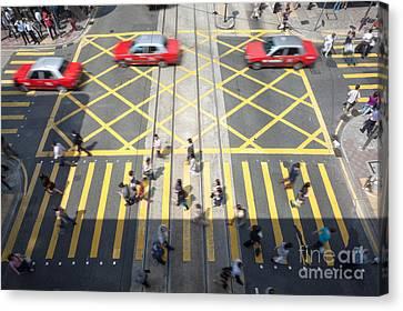 Tsui Canvas Print - Zebra Crossing - Hong Kong by Matteo Colombo