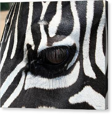 Canvas Print featuring the photograph Zebra Eye by Linda Sannuti
