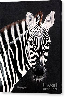 Zebra Facing Right Canvas Print