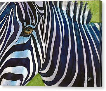 Zebra Zones Out Canvas Print