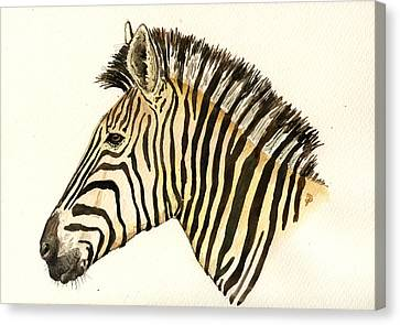 Zebra Canvas Print - Zebra Head Study by Juan  Bosco