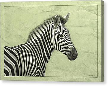 Zebra Canvas Print by James W Johnson