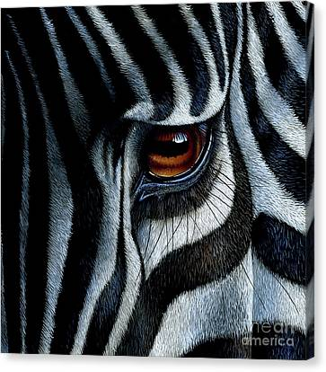 Zebra Canvas Print by Jurek Zamoyski