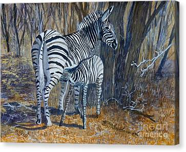 Zebra Mother And Foal Canvas Print by Caroline Street