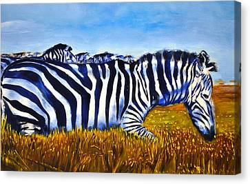 Zebra Pack Canvas Print by Ruben Barbosa