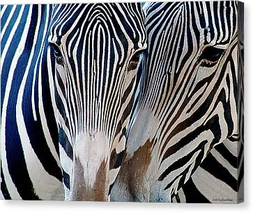 Zebra Pattern Canvas Print