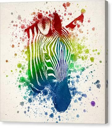 Zebra Splash Canvas Print