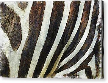 Close Up Canvas Print - Zebra Texture by Inspirowl Design