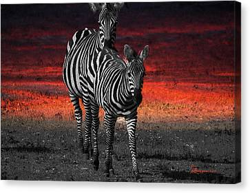 Zebra Train - Featured In Nature Photography - Wildlife And A Place For All Groups Canvas Print by EricaMaxine  Price