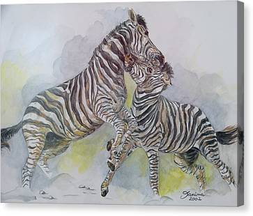 Zebras Canvas Print by Janina  Suuronen