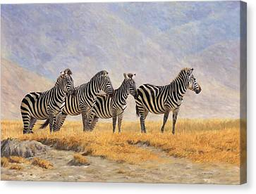 Zebras Ngorongoro Crater Canvas Print by David Stribbling