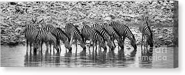 Canvas Print featuring the photograph Zebras On A Waterhole by Juergen Klust