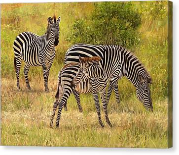 Zebras South Luangwa Canvas Print