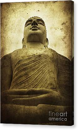 Zen Canvas Print by Andrew Paranavitana