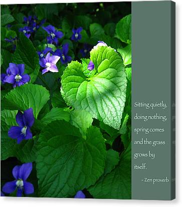 Zen Proverb With Violets Canvas Print by Heidi Hermes