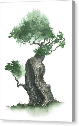 Zen Tree 1000 Canvas Print by Sean Seal