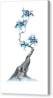 Zen Tree 840 Canvas Print by Sean Seal