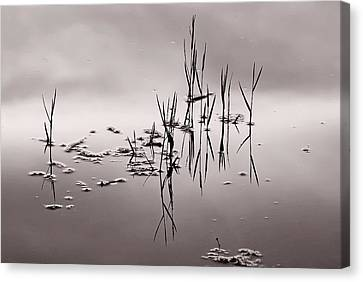 Canvas Print featuring the photograph Zen Waters by Lorenzo Cassina