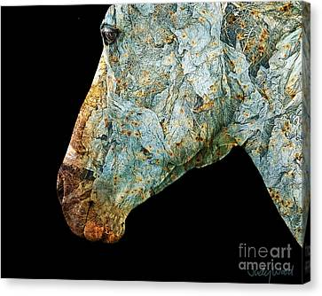 Zeniah Variation 7 Canvas Print by Judy Wood