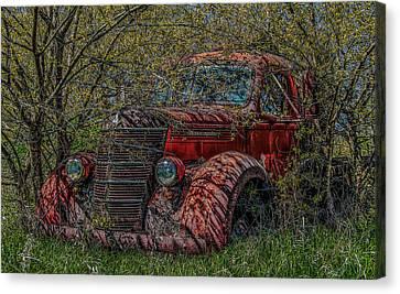 Zero Emissions  Canvas Print by Ray Congrove