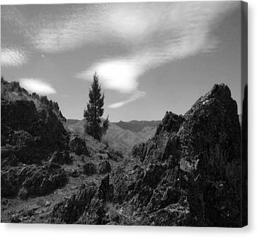 Canvas Print featuring the photograph Zig Zag Sky by Tarey Potter